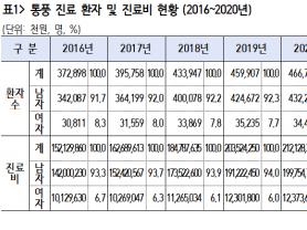 최근 5년 통풍 진료 환자 213만 명, 진료비 9153억 원
