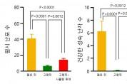 사물탕의 난임 예방·치료 효능 및 작용기전 '규명'